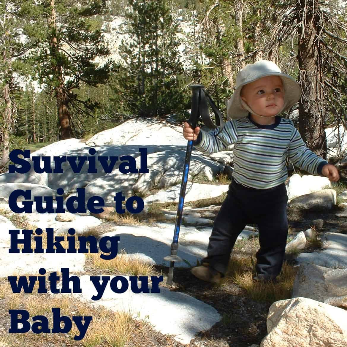 The Sling Lady S Survival Guide To Hiking With Your Baby 2018