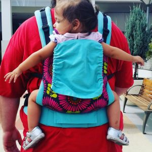 What size Tula should I get? Tula Standard vs. Tula Toddler