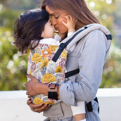 Shenandoah Tula Carrier|Tula Baby & Toddler Carriers