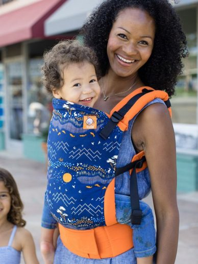 Scenic Drive Tula Carrier | Tula Carriers | Tula Toddler Carrier