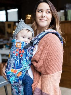 Mystic Meadows Tula Carrier | Tula Baby Carriers | Tula Toddler Carriers