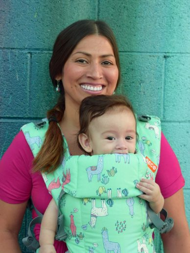 Llama Drama Day Beco Gemini | Beco Gemini Carrier | Beco Baby Carriers